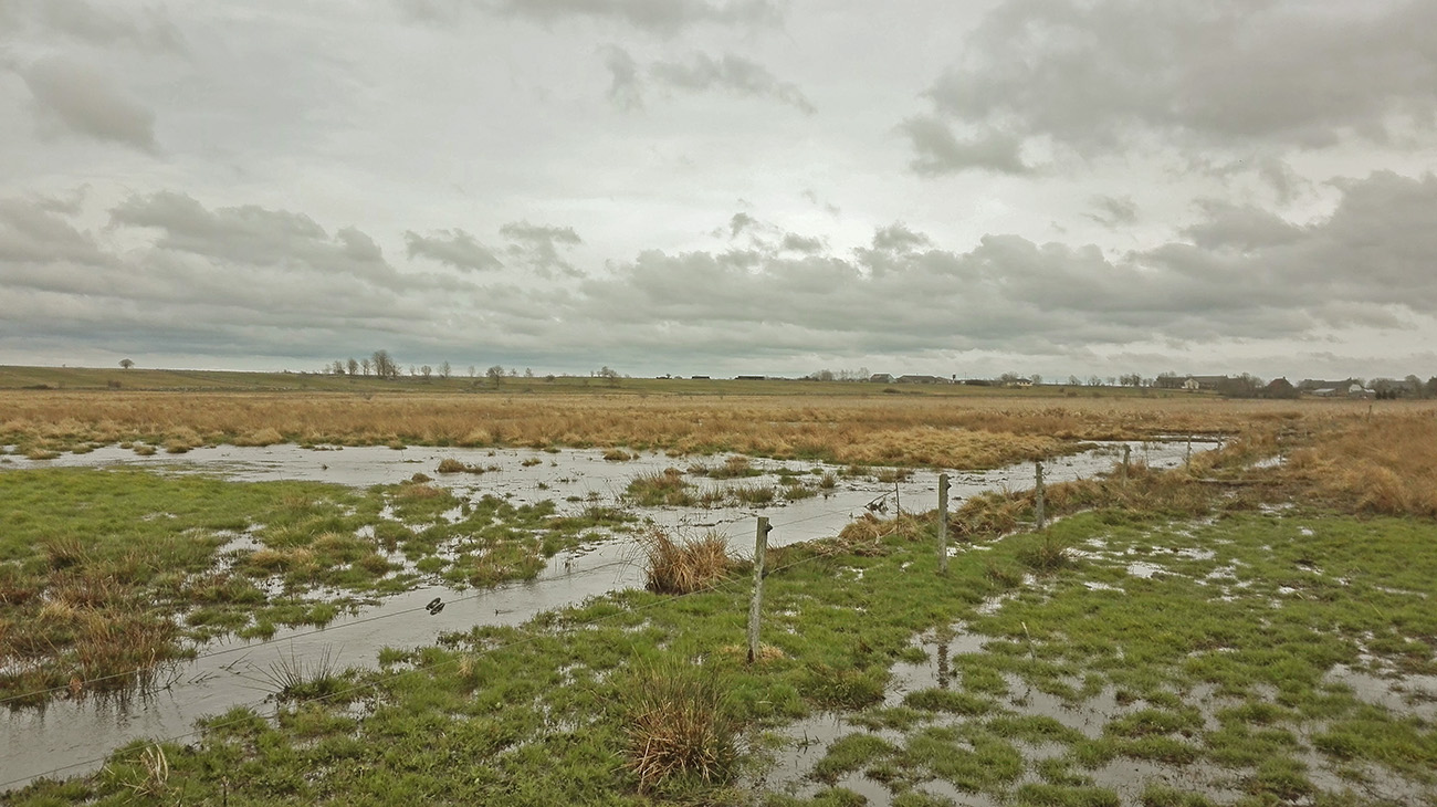 Site Natura 2000 narse de Lascols