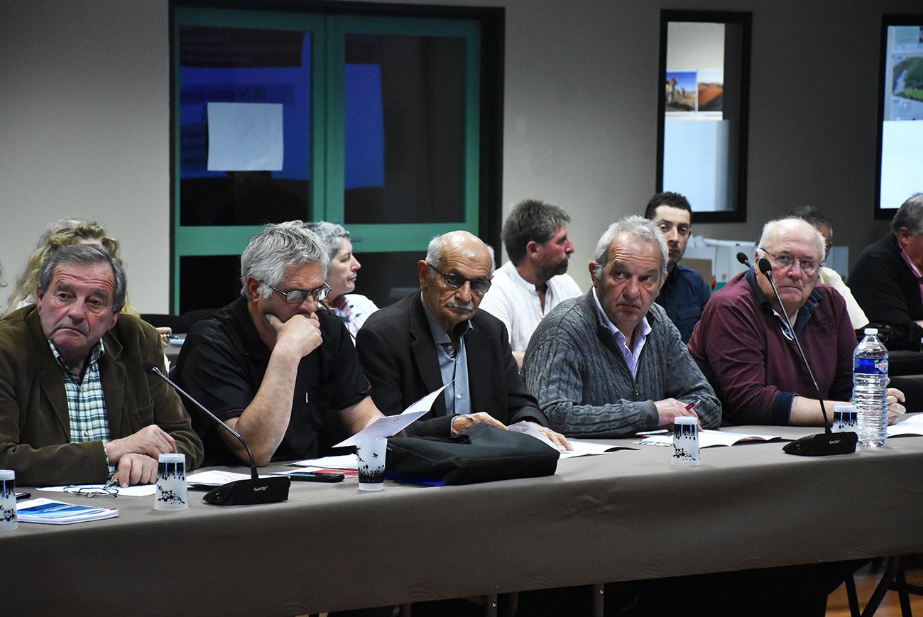 élus conférence des maires